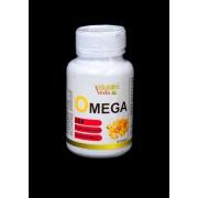OMEGA FLAX 369